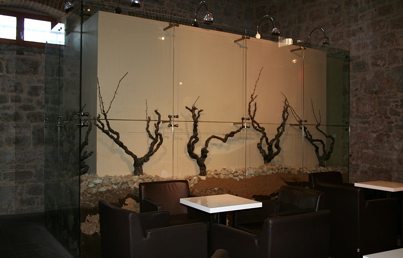 Bolska winiarnia