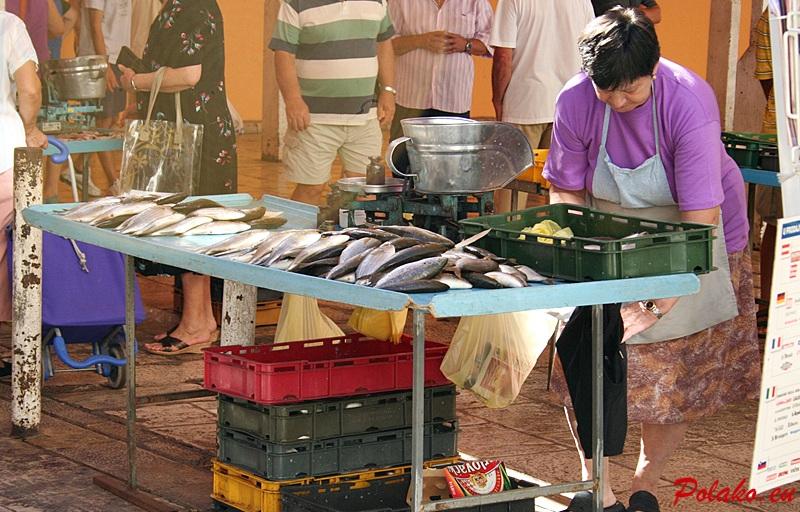 Gatunki ryb w Chorwacji