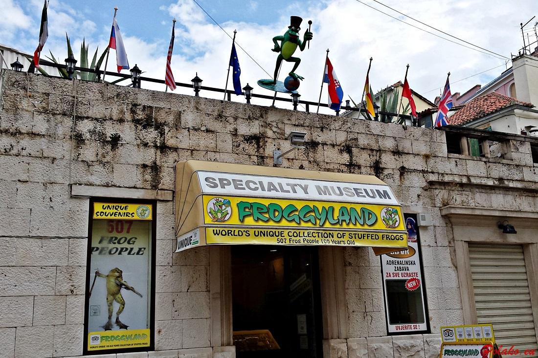 Muzeum Froggyland