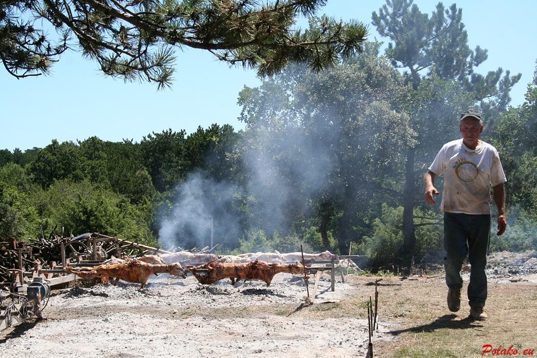 Jagnięcina w Chorwacji