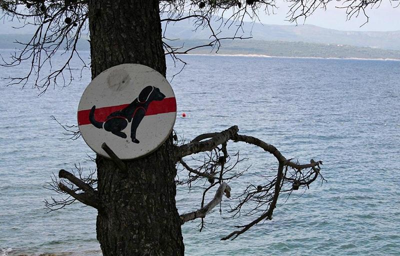 Podział plaż w Chorwacji