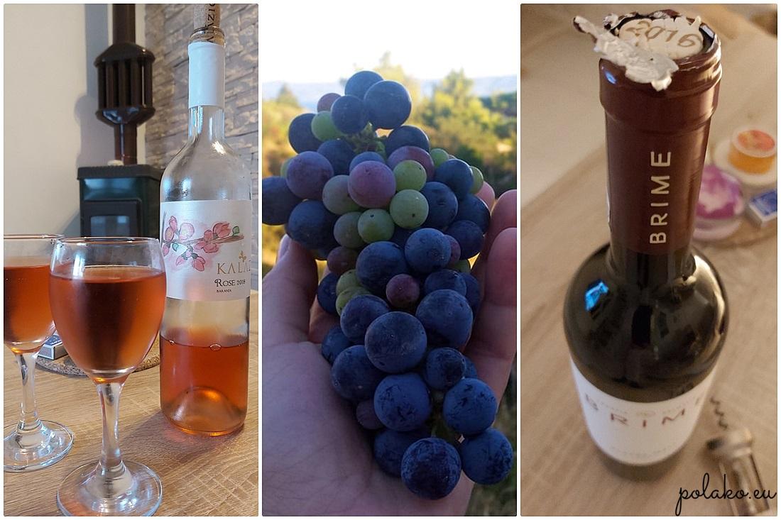 Wina w Chorwacji